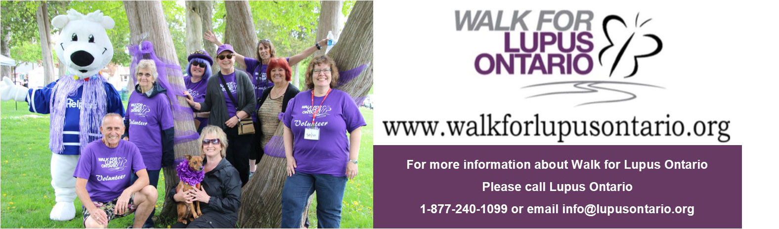 Walk for Lupus Banner.
